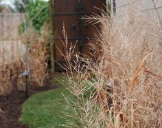 Don't struggle with trying to artfully match flowers and grasses for a garden design — just look to the source