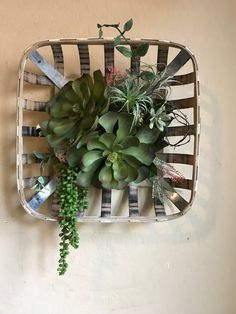 Vintage Farmhouse Decor Tobacco basket succulent Arrangement - Farmhouse style tobacco basket decor arranged with faux succulents Succulent Bowls, Succulent Planter Diy, Succulent Centerpieces, Succulent Wreath, Faux Succulents, Succulent Arrangements, Succulent Gardening, Indoor Gardening, Succulents Garden