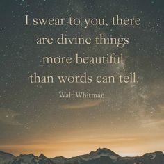 I swear to you, there are divine things more beautiful than words can tell. -Walt Whitman