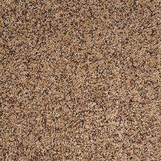 Dreamweaver Carpet Product Name: Mardi Gras Style Code: 4090