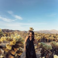 The Style Traveller- A Fashion Editor's style guide to the world Elle Fashion, Fashion Editor, Travel Expert, California National Parks, Joshua Tree National Park, Best Location, Instagram Tips, West Hollywood, Palm Springs