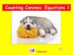 Canine Counting : Equations is a fun lesson designed to encourage student understanding  of the meaning of the equal sign, and  if equations are true or false as part of CCSS objectives. This PowerPoint presentation includes a musical cue and teacher's script.*Please note before purchasing that you need 2010 PowerPoint compatibility.CCSS Math Content: Work with addition and subtraction equations.1.0A.D.7.
