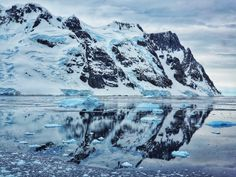 G Adventures Antarctica Classic Review | Flight of the Educator Antarctica Cruise, Drake Passage, Cruise Reviews, Ushuaia, G Adventures, Group Tours, Where To Go, Kayaking, Adventure Travel