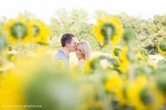 Sunflower Engagement Session www.gracehillphotography.com
