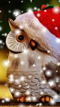 Wallpaper Christmas, New Year, owl, Holidays Owl Wallpaper Iphone, Flower Phone Wallpaper, New Year Wallpaper, Christmas Wallpaper, Mobile Wallpaper, Wallpaper Backgrounds, Christmas Art Projects, Christmas Animals, Christmas Colors