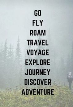 177 Best Top Travel quotes images