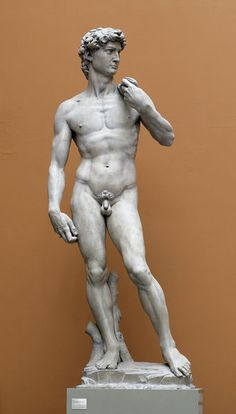 David by Michelangelo: To travel to Florence, Italy, and see the statue of DAVID.in person. Miguel Angel, Greek Statues, Plaster Cast, High Renaissance, Gifts For An Artist, The V&a, Italian Art, Victoria And Albert Museum, Bible Art