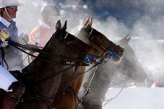 Polo on Snow von Keller Andy