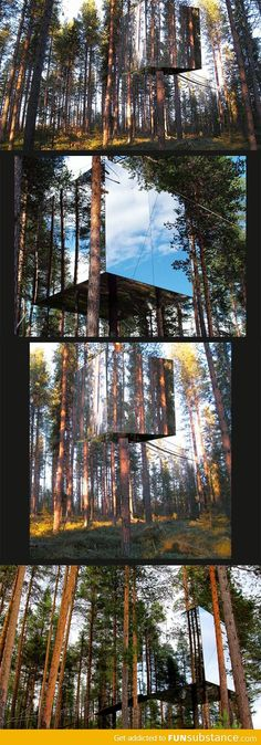 Mysterious Mirror Treehouse in Sweden