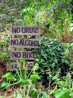 Phoenix Garden Londres