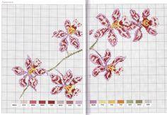 ponto-cruz-orquidea.jpg (1280×881)