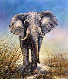canvas art images of wildlife | Olieverf schilderij Olifant I - Kunst voor in…