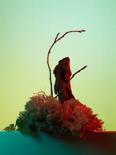@Paullepreux - Personal Work - set design @Helene_Leverrier #stilllife #stilllifephotography #fragrance #wood #greenlight #perfume #ingredients #spring #flowers #color #personalworks #frangrance