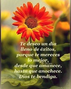 Good Morning In Spanish, Good Morning Funny, Good Morning Messages, Morning Prayers, Good Morning Good Night, Love Messages, Morning Love Quotes, Morning Thoughts, Morning Greetings Quotes