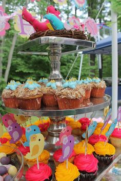 18 ideas for bird theme party ideas shabby chic Easter Birthday Party, Baby Birthday, 1st Birthday Parties, Birthday Ideas, Bird Theme Parties, Bird Party, Ostern Party, Motto, Cupcakes