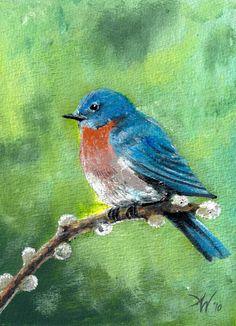 Bluebird Painting  - Bluebird Fine Art Print