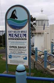 Visit the Whale Museum Eden NSW Australia and find out more about the history of whaling and the Humpback Highway