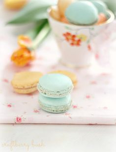 Craftberry Bush: Hopes of Spring and French Macarons