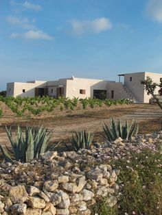 Chic summer retreat on the Formentera countryside Mediterranean Houses, Ibiza, Hotel Am Meer, Desert Homes, Beautiful Villas, Rustic Chic, Boho Chic, Rustic Wood, Spanish Style