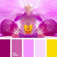 Color Palette No. 1347