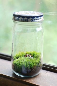 tiny farm in vintage bordens jar by weegreenspot on Etsy, $30.00
