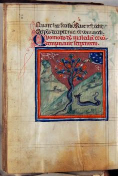 Treatise of the World's Creation - World Digital Library Duccio Di Buoninsegna, Book Of Genesis, Bible Illustrations, Adam And Eve, Watercolor Drawing, Sacred Art, Beast, Miniatures, Museum