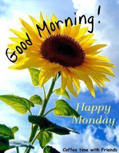 Good Morning Happy Monday!