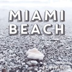 #Enjoy #fun in the #sun at #Miami #Beach with #memorymaker Birdy in today's #featured #Nowvel #photobook! #Enjoy #fun in the #sun at #Miami #Beach with #memorymaker Birdy! Print YOUR own 🌟FREE🌟 photo book like this album by Birdy! 💯