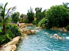 Discovery Cove... A must!! Swim with the dolphins and stingrays, fish in an island setting!!! Loved it!!!