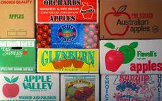 Fancy Apples #tasmania #huon #theappleshed