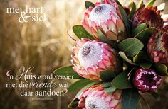 Foto's vir die mooi 31 God Quotes About Life, Love Me Quotes, Life Quotes, Afrikaanse Quotes, Goeie Nag, Goeie More, Good Morning Inspirational Quotes, Happy Birthday Greetings, Happy Relationships
