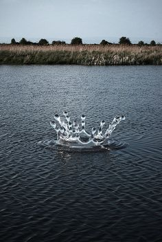 sculpture by Codsteaks, Ashlands Nature Reserve, Portisheadby jhcl+, via Flickr