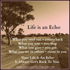 Daveswordsofwisdom.com: Life is an echo, it always get's back to you.