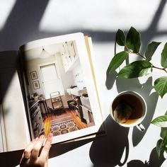 Monday evening. Kinfolk — The Home Issue, my favourite thus far.  | Gabrielle Assaf | VSCO Grid