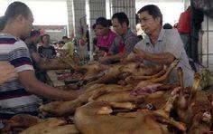 Celebra China festival de carne de perro