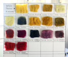 India y la Luna: Taller de Tintes Naturales / Workshop of Natural Dyes