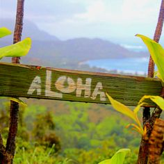 Say Aloha to Hawaii! www.facebook.com/AllAboutTravelInc www.allabouttravel.org 605-339-8911 #travel #hawaii