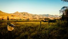 Scenic Rim: This mountain range was once part of the largest volcano in the Southern Hemisphere.