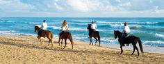 Punta Cana Sports and Activities - Excellence Punta Cana - Excellence Group Resorts