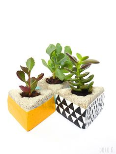 DIY Blumentopf aus #Beton | DIY #concrete plant pots | www.dorokaiser.online.de