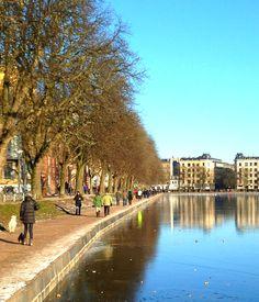 Lakes in Copenhagen during winter