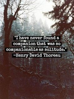 I have never found a companion that was so companionable as solitude. Henry David Thoreau Ahh, yes! How I treasure solitude when I can get it! Great Quotes, Quotes To Live By, Me Quotes, Motivational Quotes, Inspirational Quotes, Change Quotes, Strong Quotes, Beauty Quotes, Quotes About Being Alone