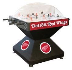 Detroit Red Wings Dome Hockey Game