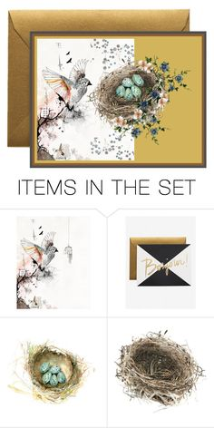 """Bird and Nest Card"" by mollygrant ❤ liked on Polyvore featuring art"