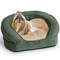 K  H Soft Velvety Paw Printed Deluxe Ortho Bolster Sleeper  Small  Green * Check out the image by visiting the link.