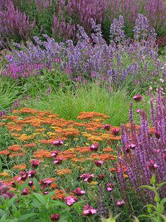 Scampston   Walled Garden   Jane Barber 55   Flickr