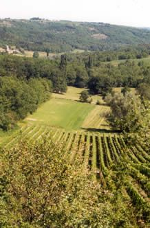 Spotlight on the wines of Cahors from Malbec grapes, Southwestern France