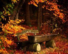 429761-1280x1024-autumn
