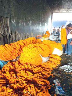 Oeillets d'inde en quantité au marché aux fleurs de Kolkata, sous le pont Howrah. Ces fleurs servent principalement aux offrances aux différentes divinités hindoues.  Découvrez l'inde avec India Someday: www.indiasomeday.fr #fleur #inde #orange