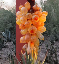 Chihuly — Desert Botanical Garden - Phoenix Open pin to see for pictures